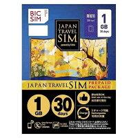 IIJ BIC SIMジャパントラベルパッケージ 1GBマイクロSIM IMB229 マイクロ