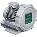 Showa/昭和電機 電動送風機 渦流式高圧シリーズ ガストブロアシリーズ 0.1kW U2V-10T