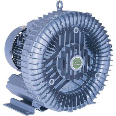 昭和 電動送風機 渦流式高圧シリーズガストブロアシリーズ 0.4/0.5kW U2S-40T