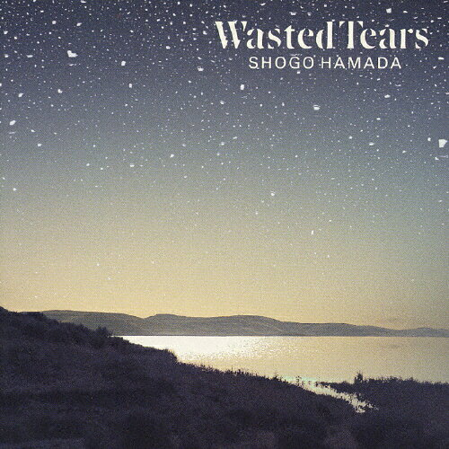 Image result for shogo hamada wasted tears