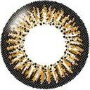 度なし エバーカラーワンデー クリスタルブラウン 10枚 レンズ直径14.5mm