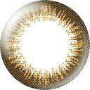 度なし エバーカラーワンデーナチュラル シャンパンブラウン 20枚 レンズ直径14.5mm