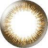 エバーカラーワンデー ナチュラル シャンパンブラウン 度数(-8.50) 20枚入 レンズ直径14.5mm