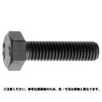 10.9 6カクBT ニホンF 表面処理 BC 六価黒クロメート 規格 12X200X36 入数 1