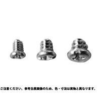 ステンレス/SSブラック +- #00番 ナベ ミニチュアねじM0.8 × 1.2