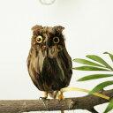 """アーティフィシャル・バード """"Brown Owl"""" - S"""
