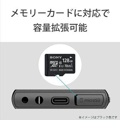 SONY ウォークマン Aシリーズ NW-A107(R)
