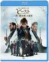 ファンタスティック・ビーストと黒い魔法使いの誕生/Blu-ray Disc/1000748427