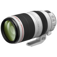 Canon EF100-400F4.5-5.6L IS 2 USM