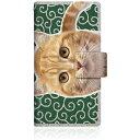 CaseMarket NYAGO iPod-touch5 スリム手帳型ケース ノート キュート 甘えんぼう 茶トラ 猫 ペロペロするにゃ~。 にゃんとも 和風 だにゃ~。 iPod-touch5-BNG2S2759-78 唐草模様 緑