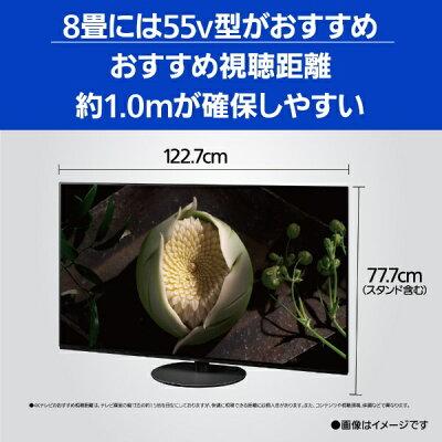 Panasonic 有機ELテレビ VIERA JZ1000 TH-55JZ1000