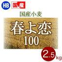 北海道産パン用小麦粉 春よ恋100
