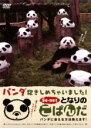 となりのこぱんだ パンダ抱きしめちゃいました ~パンダに会える方法教えます~/DVD/KD-00003