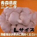 【種用にんにく】青森県産福地系ホワイト六片(ALサイズ)1kg