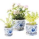 大和工業 陶器植木鉢3点セット 受皿付 白・青 花柄 UH02 3DKB4J