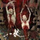 Excruciatingly Euphoric Torment アルバム AVR-3