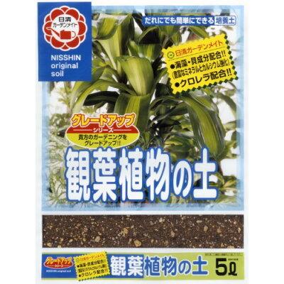 グレードアップ観葉植物の土