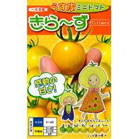 ナント種苗 きら-ず ミニトマト