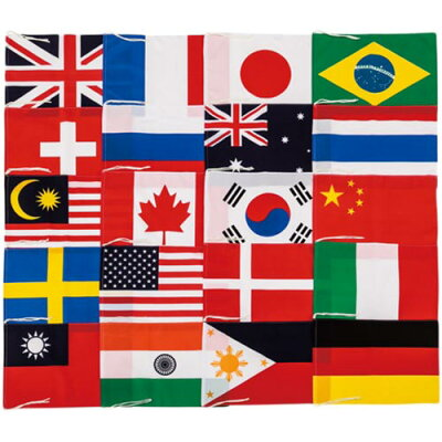 三和体育 SANWATAIKU テトロン製 万国旗 20ヶ国入 34×50cm S-0593