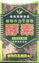 酵素(植物性乳酸菌配合) 150g