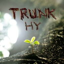 TRUNK/CD/HYCK-10003