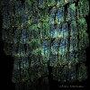アソマ/CD/EM-1195CD