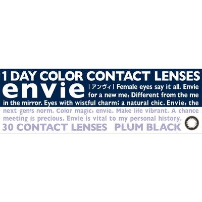 アンヴィ ワンデー プラムブラック レンズ直径 DIA14.0mm 30枚入