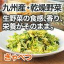 国産野菜 九州産 キャベツ 28g(310g相当)