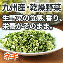 国産野菜 九州産 ネギ 5g(100g相当)