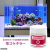 珪藻類除去抑制剤 粉末茶ゴケキラー 海水用 150g