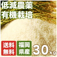(24年産)九州宗像市の玄米(有機栽培)- 有機米元気つくし30kg