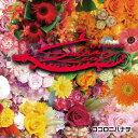 ココロニハナヲ/CD/LMX-7729