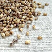 国産 もち麦 (150g)