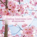 Healing Inspiration Live/CD/TXTH-0011