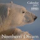 壁掛カレンダー写真星野道夫Northern Dream