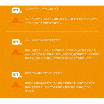 ベセトジャパン リモコン付ペン型ICレコーダー VR-P003N(ブラック)