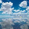 Sense of Wonder~河田理奈作品集~/CD/TIAA-1032