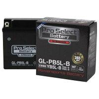 Pro Select Battery プロセレクトバッテリー 汎用 プロセレクトバッテリー GL-PB5L-B YB5L-B 互換 液入