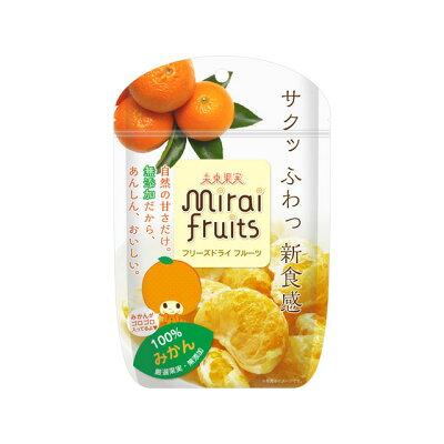テクセルジャパン ミライフルーツ みかん 13g
