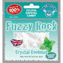 Fuzzy Rock(ファジーロック) キシリトールキャンディー クールミント味(40g)