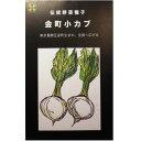 大袋 在来固定種伝統野菜の種 金町小カブ 50ml畑懐