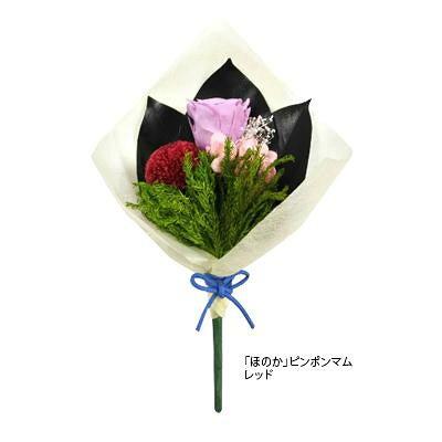 プリザーブドフラワー 仏花 ほのか ピンポンマム レッド C20310 1360637