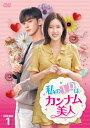 私のIDはカンナム美人 DVD-BOX1/DVD/TCED-4513
