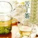 苦丁茶 100g
