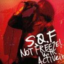 NOT FREEZE! with activein/CD/WWCA-31067