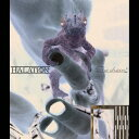 The chain/CDシングル(12cm)/WWCA-31092