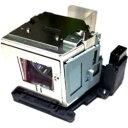 TAXAN KG-LPH2230 KG-PH201WX/ KG-PH202X用交換ランプ