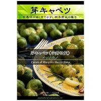 (野菜タネ)芽キャベツ:メッゾナノ