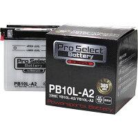 Pro Select Battery プロセレクトバッテリー 開放式 PB10L-A2