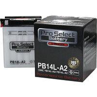 Pro Select Battery プロセレクトバッテリー PB14L-A2